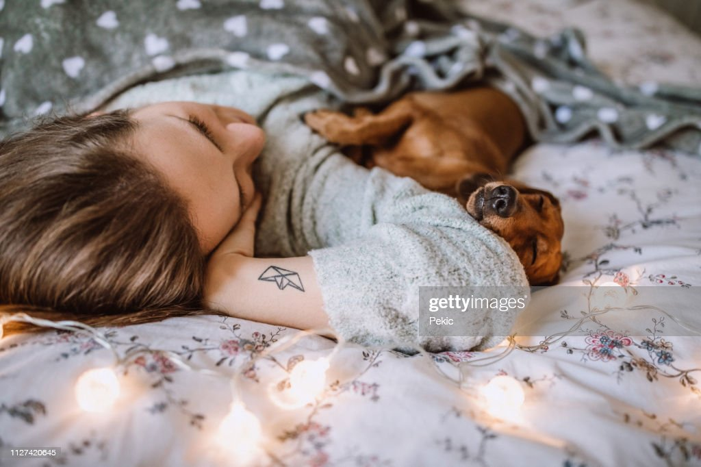 Enjoying Christmas Morning With Her Beautiful Dachshund in Bed : Stock Photo