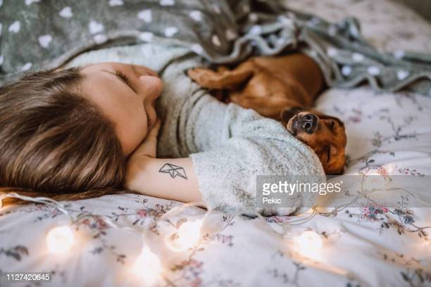 enjoying christmas morning with her beautiful dachshund in bed - dachshund holiday stock pictures, royalty-free photos & images