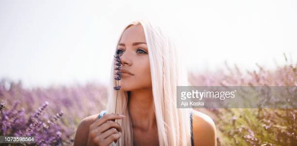 enjoying lavender scent. - purple dress stock pictures, royalty-free photos & images