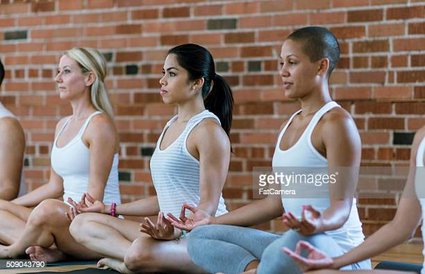 enjoying meditation in yoga - five people stock pictures, royalty-free photos & images