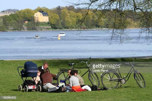 enjoying picnic in djurgarden. - djurgarden stock pictures, royalty-free photos & images
