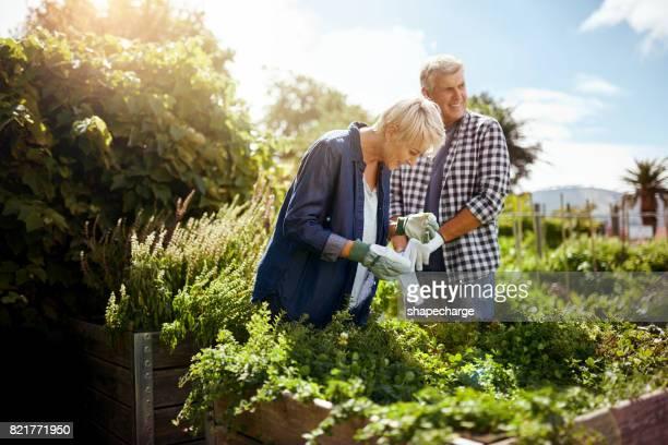 Genieten van wat eetbare tuinieren