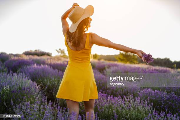enjoying summer day in lavender field - yellow dress stock pictures, royalty-free photos & images