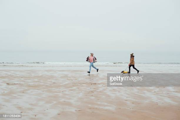 enjoying the beach at winter - moving after stock pictures, royalty-free photos & images