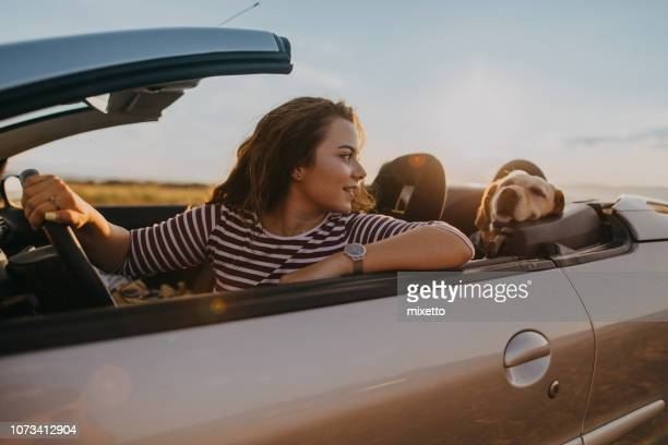 enjoying the ride - convertible stock pictures, royalty-free photos & images