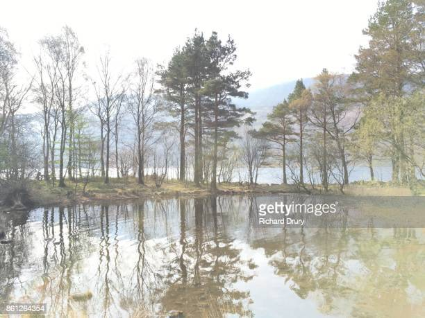 ennerdale water - richard drury stock pictures, royalty-free photos & images