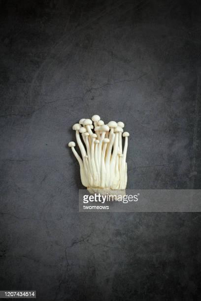enoki mushroom still life image. - enoki mushroom stock pictures, royalty-free photos & images