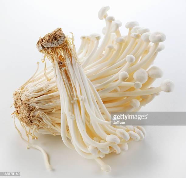 enokitake mushroom - enoki mushroom stock pictures, royalty-free photos & images