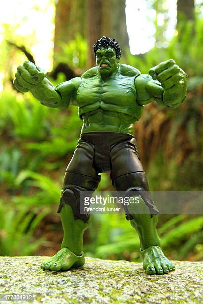 enraged in the forest - incredible hulk stock photos and pictures