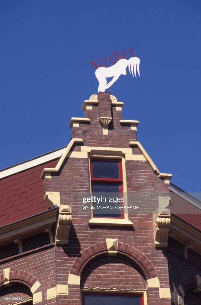 Quartier rouge de La Haye Pictures   Getty Images