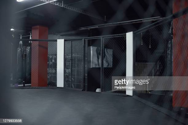 enter the ring to prove your strength - mixed martial arts stock pictures, royalty-free photos & images