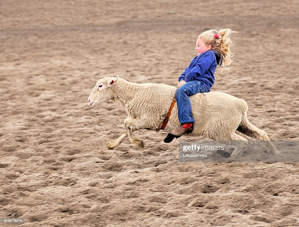 Enthusiastic Mutton Bustin Rodeoing Little Girl : Stock Photo