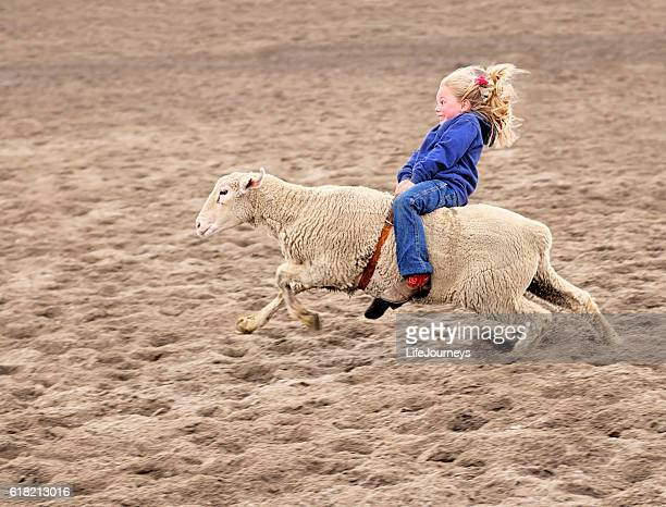 enthusiastic mutton bustin rodeoing little girl - practical joke stock photos and pictures