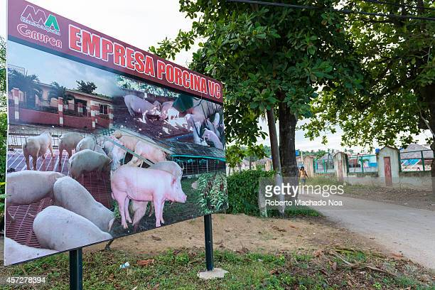 Entrace to the Empresa Porcina a Government company for raising pigs and providing them as meat for tourism and grocery stores
