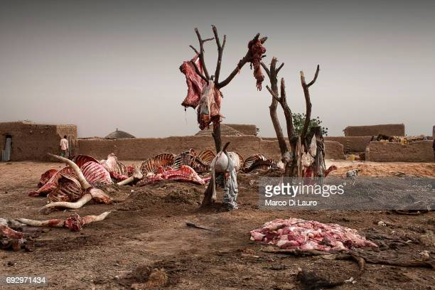 Entrails of dead animals are seen hanged as meet traders buy the animals dead bodies to cook them on the spot and send them to Nigeria on June 27...