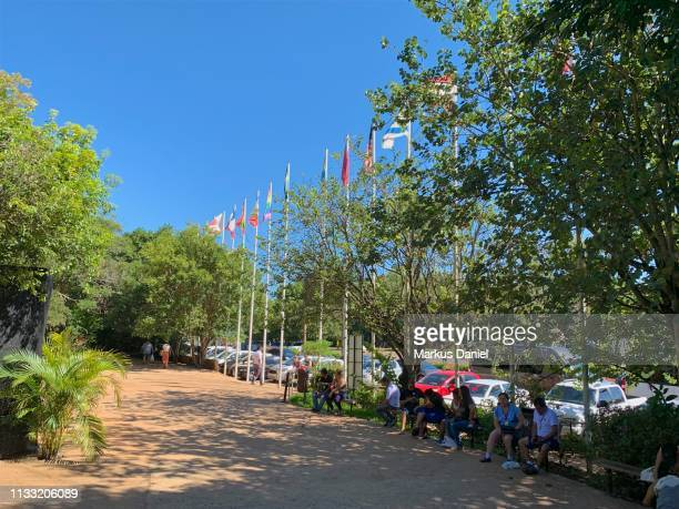 "entrance area of parque das aves in foz do iguacu, brazil - ""markus daniel"" stock pictures, royalty-free photos & images"