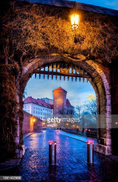 entrance gate to the royal castle on wawel hill in krakow - wawel cathedral stock pictures, royalty-free photos & images