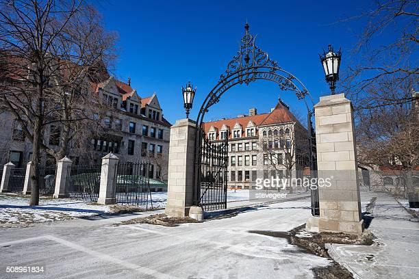 入り口ゲート、シカゴ大学 - シカゴ大学 ストックフォトと画像