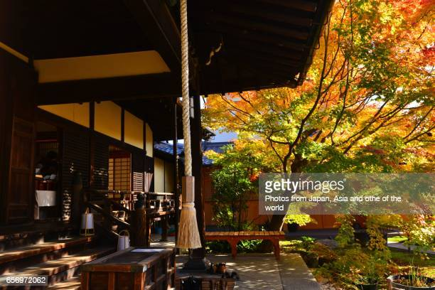 Entrance Hall of Shorin-ji Temple in Autumn, Kyoto