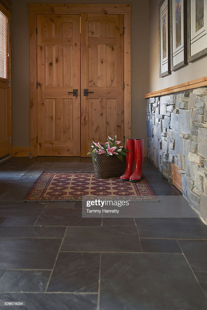 Entrance of chalet : Stock Photo