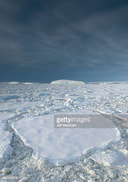 entrance of the lemaire channel along the antarctic peninsula. - pack ice stock pictures, royalty-free photos & images