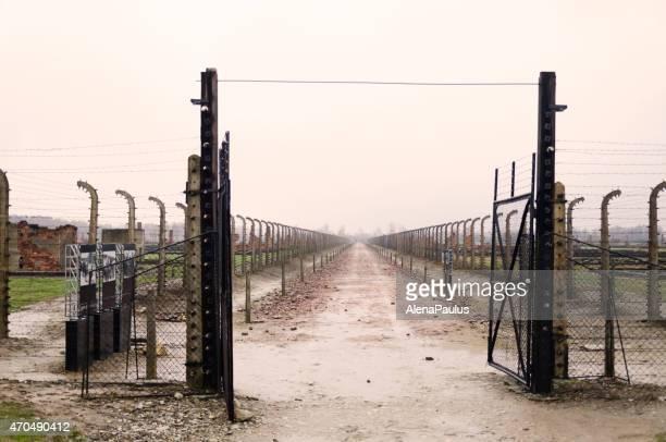 entrada pela electrical muro que rodeia o acampamento auschwitz - concentration camp - fotografias e filmes do acervo