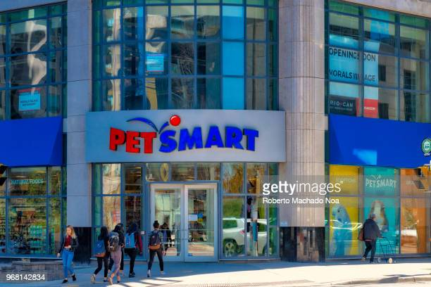 60 Top Pet Store Front Pictures, Photos, & Images - Getty Images