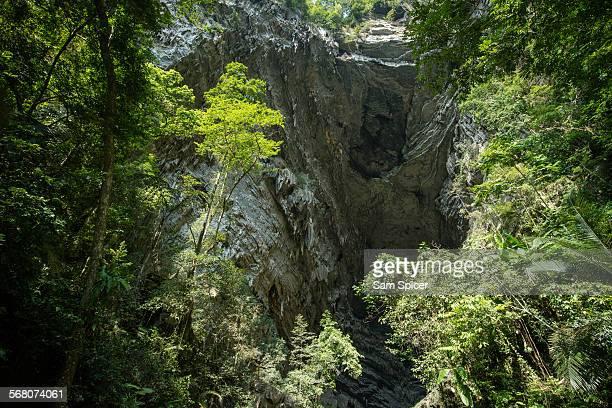 Entrance to huge Vietnam cave