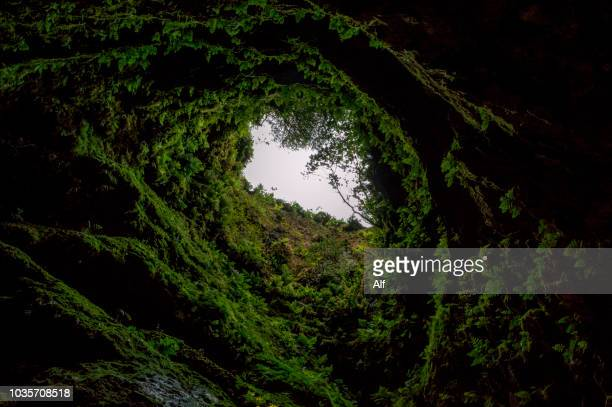 entrance to the algar do carvão cave in terceira, azores islands, portugal - lava stock pictures, royalty-free photos & images