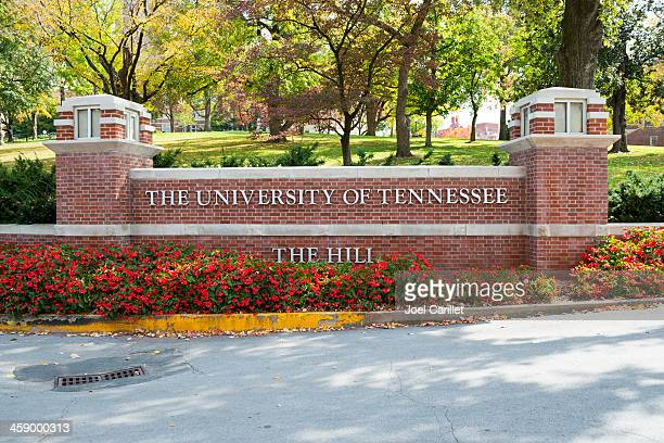 university of tenneessee - knoxville tennessee stock pictures, royalty-free photos & images