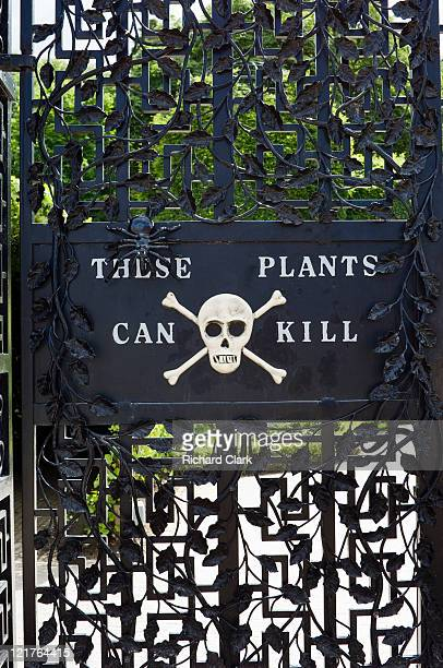 entrance to the poison garden at alnwick garden, northumberland, uk - alnwick stock pictures, royalty-free photos & images