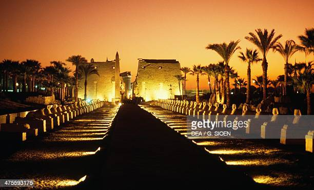 Entrance to the Temple of Luxor seen from the Avenue of the Sphinxes at sunset, Luxor, Thebes , Egypt. Egyptian civilisation, New Kingdom, Dynasty...