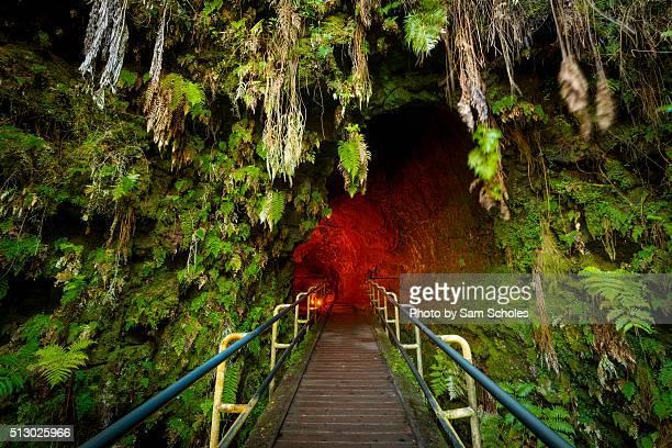 entrance to the thurston lava tube - パホア ストックフォトと画像