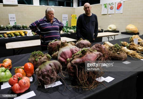 Entrants arrive through the night and lay out their giant beetroot as they prepare for the giant vegetable competition on the first day of the...
