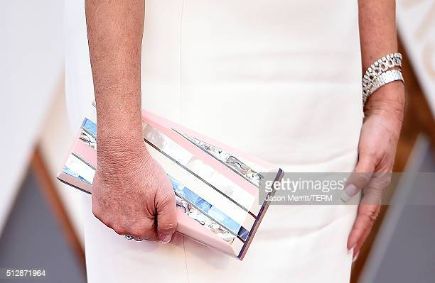 Entrepreneur Joy Mangano clutch detail attends the 88th Annual Academy Awards at Hollywood Highland Center on February 28 2016 in Hollywood California
