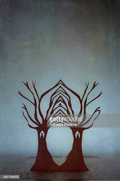 entwined trees - catherine macbride stock pictures, royalty-free photos & images