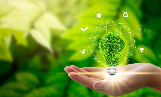 Environment concept 1151803694