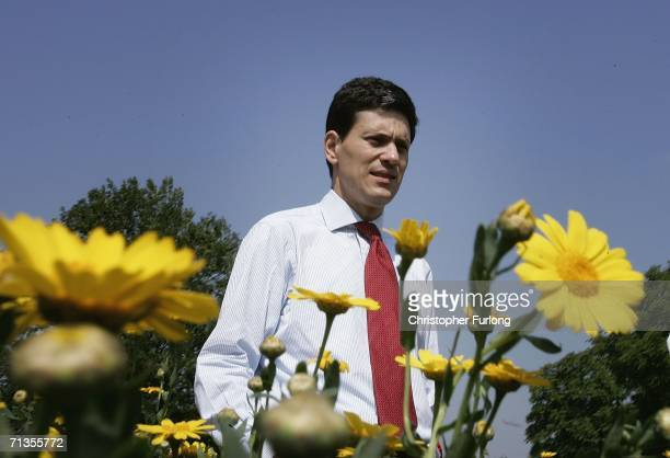 Environment secretary David Milliband walks through a wild flower meadow during his visit to The Royal Show on 3 July Stoneleigh England Milliband...