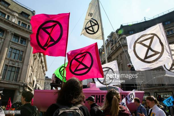 Environmental activists are seen holding flags with an Extinction Rebellion's logo during the demonstration Activist protest at the Parliament Square...