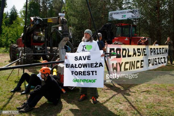 Environmental activists hold placards and block logging machines to stop cutting the trees of the Bialowieza forest during a protest in Czerlonka...