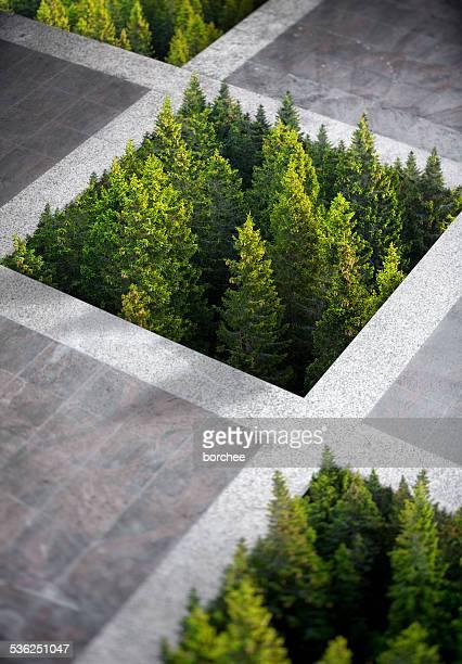 concepto ambiental - lozano fotografías e imágenes de stock