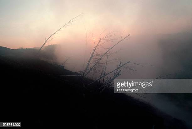 Environmental hazards in Centralia have been caused by seams of uncontrolled underground coal burning The town of Centralia had to be evacuated after...