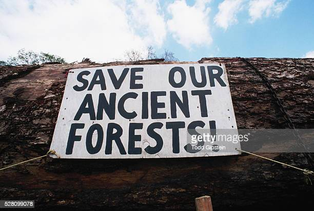 environmental protest sign on log - image stock pictures, royalty-free photos & images