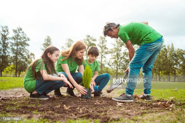 environmentalists planting together in park - izusek stock pictures, royalty-free photos & images