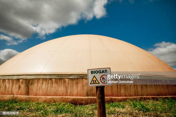 Environmentally friendly and renewable biogas energy generation in the Thika area at an avocado oil mill of Olivado company on October 09 2017 in...