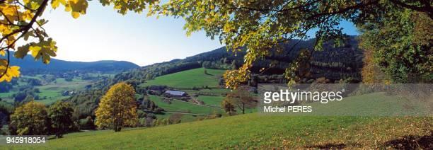 Environs de Lapoutroie paysage typique des Vosges Alsaciennes Environs de Lapoutroie paysage typique des Vosges Alsaciennes