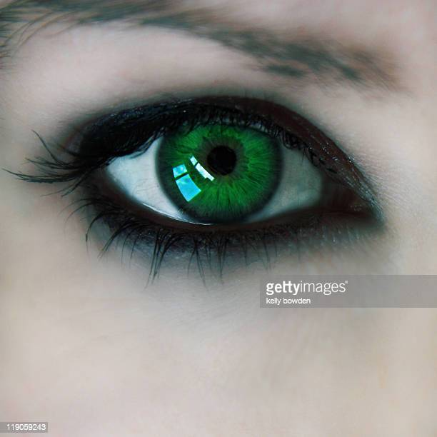 envy - green eyes stock pictures, royalty-free photos & images