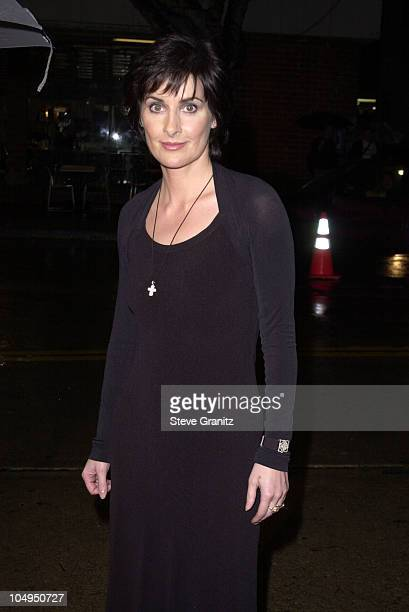 Enya during Sweet November Premiere at Bruin Theatre in Westwood California United States