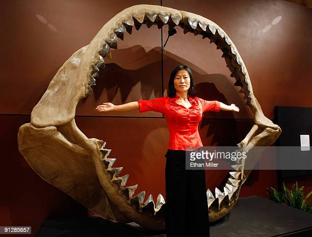 Enya Kim from the Natural History department at auctioneers Bonhams Butterfields stands in front of one of the world's largest set of shark jaws...
