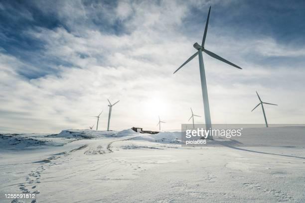 eolic turbiner för vindkraftindustrin: tekniker som utför underhåll - vindkraft bildbanksfoton och bilder